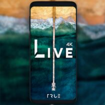 Live Wallpapers – 4K Wallpapers 1.4.2.2 APK Free Download MOD for android