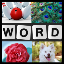Word Picture – IQ Word Brain Games Free for Adults 1.4.0 APK Free Download MOD for android