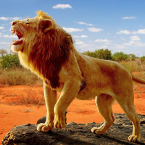 The Lion  APK MOD (Unlimited Money) Download for android